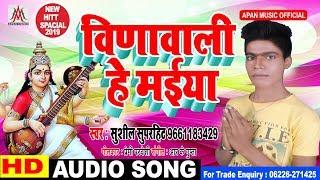 विणावाली हे मईया || Sushil Superhit || Vinawali He Maiya || Sarswati Puja Hit Song