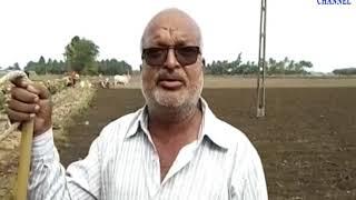 Mangrol | Farmers taking rain breaks sowing doing this| ABTAK MEDIA