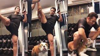 Salman Khan Shares Another Gym Workout Video   BHARAT