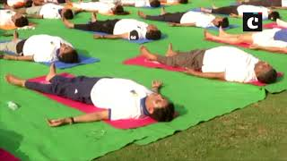 International Yoga Day: Piyush Goyal, Ravi Shankar Prasad perform yoga