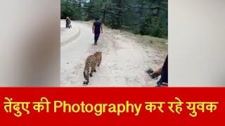 South kashmir में Leopard की Photography करते नजर आए कश्मीरी युवक, Video viral