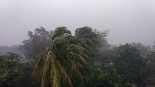 ବାତ୍ୟା ର ଆତଙ୍କିତ ରୂପ Odia News Today latest Headlines in Odisha.