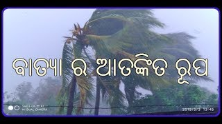 Cyclone Updated News Today Catch MI Smartphone.