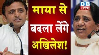 Mayawati से बदला लेंगे अखिलेश ! SP ने Maya से निपटने का प्लान किया तैयार |#DBLIVE