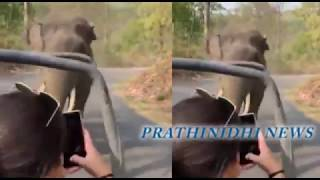 Viral Video : Elephant tries to attack Tourist Vehicle