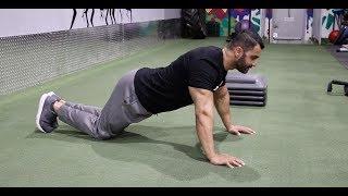 Fat Loss Workout For Beginners! Day-26 (Hindi / Punjabi)