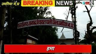 बिरसिंहपुर पाली- जनपद पंचायत पाली में उड़ाई जा रही स्वच्छ भारत अभियान की धज्जियां, स्वछता के नाम पर