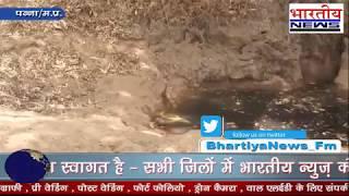 पहली बारिश और नाग नागिन की आलिंगन की दुर्लभ तस्वीरे। #bn #bhartiyanews