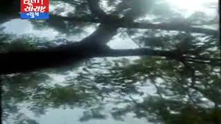 જોડિયાના નેસડા વિસ્તારમાં યુવકનો ગળાફાંસો ખાય આપઘાત