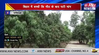 बागवानों में चमकी का खौफ || ANV NEWS  DHARAMSHALA - HIMACHAL PRADESH