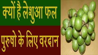 क्यों है लेशुआ फल पुरुषो के लिए वरदान- DDEN Tv Ayurveda