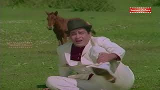 JAWAN MOHABBAT   Zulm Sitam Ko Hi Hum To Ada Samjhe   Song of Shammi Kapoor & Asha Parekh