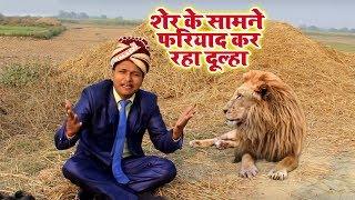 Sher ke samane fariyad kar raha hai ye dulha शेर के सामने फरियाद कर रहा दूल्हा star deva