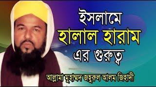 ইসলামে হালাল হারামের গুরুত্ব   জহুরুর আলম জিহাদী   Bangla Waz   Mawlana Johurul Alam Jihadi   2019