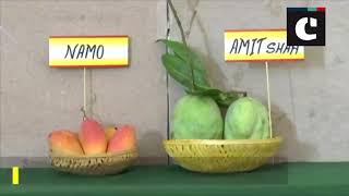 Over 500 varieties of mangoes on display at Delhi's 31st Mango Festival