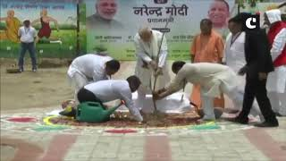 PM Modi launches tree plantation drive in UP's Varanasi