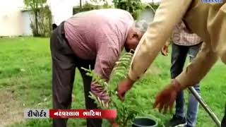 Lathi |Tree planting program is organized | ABTAK MEDIA