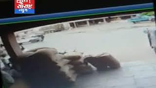 થરાદ-કારે સાયકલ ચાલકને લીધો હડફેટે ઘટના CCTV માં કેદ