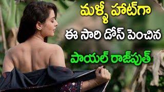 payal rajput new movie I payal rajput gallery I bellamkonda sai srinivas I rectv india