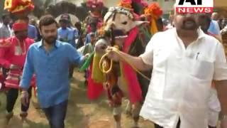 Maganti Babu Pongal Celebrations || west godavari district || sankranthi sambaralu