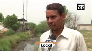 दिल्ली: मुंगेशपुर गांव के किसान सब्जियां उगाने के लिए कर रहे जहरीले पानी का इस्तेमाल