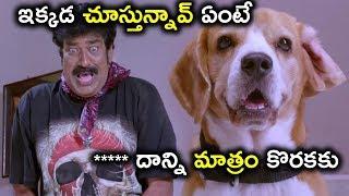 ఇక్కడ చూస్తున్నావ్ ఏంటే ***** దాన్ని మాత్రం కొరకకు - Latest Telugu Movie Scenes - Rajendra Prasad