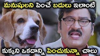 మనుషులని పెంచే బదులు ఇలాంటి కుక్కని ఒకదాన్ని - Latest Telugu Movie Scenes - Rajendra Prasad