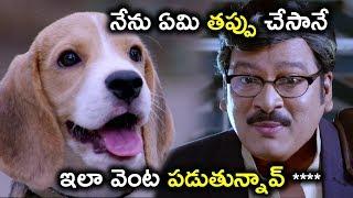 నేను ఏమి తప్పు చేసానే ఇలా వెంట పడుతున్నావ్ ****  - Latest Telugu Movie Scenes - Rajendra Prasad