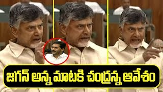 TDP Chandrababu Emotional Speech In Ap Assembly | AP Budget 2019- 20 | Top Teugu TV