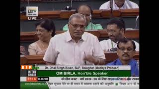 Dr. Dhal Singh Bisen on the demands for grants under the control of MORTH for 2019-20