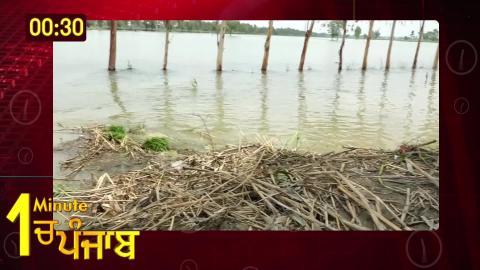 Video- 1 Minute में देखिए पूरे Punjab का हाल. 17.07.2019
