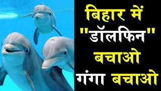 Dolphin DolphinGanga #Bihar #Ganga Save Dolphin in Bihar and protect Ganga.