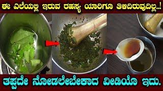 ಈ ಎಲೆಯಲ್ಲಿ ಇರುವ ರಹಸ್ಯ ಯಾರಿಗೂ ತಿಳಿದಿರುವುದಿಲ್ಲ..! || Kannada Health Tips