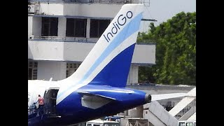 IndiGo posts highest-ever quarterly profit of Rs 1,203 crore in Q1