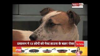 कुत्तों से सावधान, काटने पर नहीं मिलेगी दवा