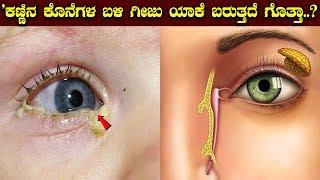 ಕಣ್ಣಿನ ಕೊನೆಗಳ ಬಳಿ ಗೀಜು ಯಾಕೆ ಬರುತ್ತದೆ ಗೊತ್ತಾ..? || Kannada Facts
