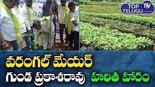 Warangal Mayor Gunda Prakash Rao Planting Trees  on  the Occasion of KTR Birthday | Top Telugu TV