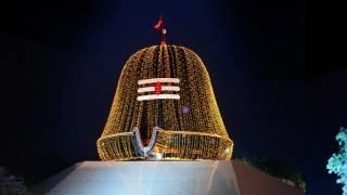 GURUJI MANU BHUL NA JANA l Full Audio Bhajan | JAI GURUJI