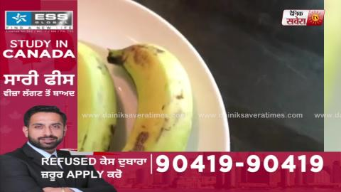 Rajja Beta | EP 31 | Shehnaz Gill Supports Himanshi Khurana | Rahul Bose | Gurnam Bhullar | Dainik Savera