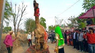 New Rajasthani Rasiya Song || मैं छोरा शेखावाटी का - mai chhora Sekhawati ka | Maina