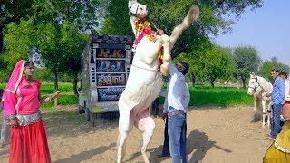 New Dj Rasiya || बचाइले मेरी सासुलिया - Bachaile Meri Sasuliya || Maina