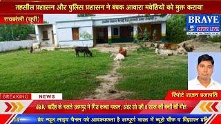 आवारा पशुओं से सबसे ज्यादा किसान परेशान, आवारा पशुओं को विद्यालय में किया बंद | #BRAVE_NEWS_LIVE TV