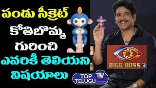 Nagarjuna Hand Monkey in Bigg Boss 3 Pandu Secret | Bigg Boss 3 Monkey Toy | Top Telugu TV