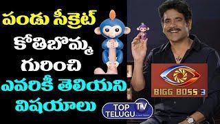 Nagarjuna Hand Monkey in Bigg Boss 3 Pandu Secret   Bigg Boss 3 Monkey Toy   Top Telugu TV