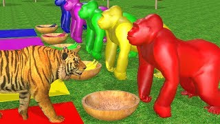 Los animales de granja y sus crías transforman - Wild Animals Eating Banana And Change Colors.