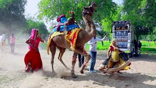 New Dj Rasiya || मेरी अदि की धमक   Meri Adi Ki dhamak || Vid Evolution Rajasthani