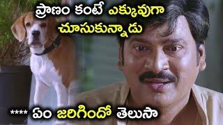 ప్రాణం కంటే ఎక్కువుగా చూసుకున్నాడు **** ఏం జరిగిందో - Latest Telugu Movie Scenes - Rajendra Prasad
