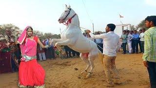 New Dj Rasiya || गाड़ गाटी में - Gaad Gaati Me || Rajasthani Sekhawati