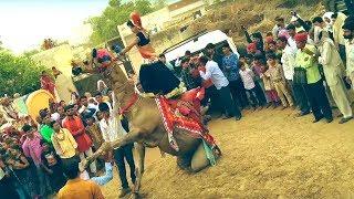 New Dj Rasiya || मेरी अदि की धमक - Meri Adi Ki dhamak || Rajasthani Sekhawati