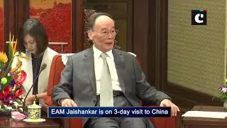 S Jaishankar meets Chinese VP Wang Qishan in Beijing